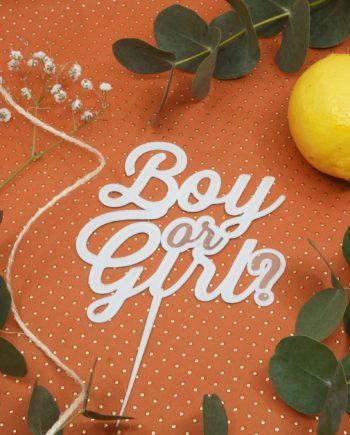 caketopper baby shower Boy or Girl